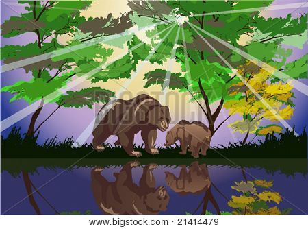 illustration with two bears near forest lake