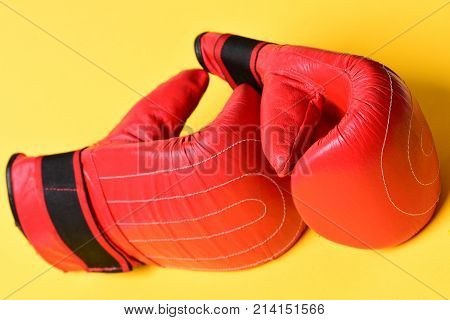 Combat And Fight Concept. Pair Of Boxing Gloves