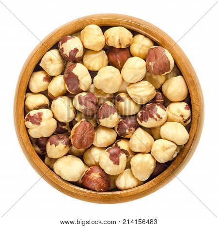 Roasted hazelnuts in wooden bowl. Crisp toasted nuts of the hazel. Shelled whole seeds of cobnuts or filbert nuts, Corylus avellana. Macro food photo, close up from above isolated on white background.
