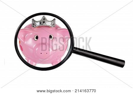 Piggy Bank and Magnifying Glass on White Background