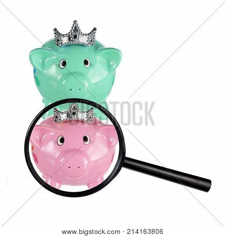 Piggy Banks and Magnifying Glass on White Background