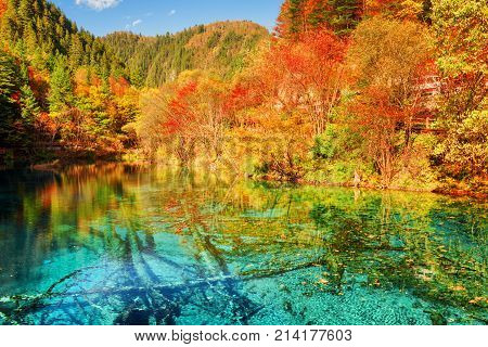 Autumn Forest Reflected In Azure Water Of The Five Flower Lake