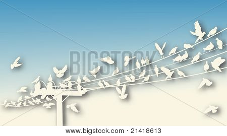 Editable vector cutout of birds roosting on telegraph wires with background made using a gradient mesh poster