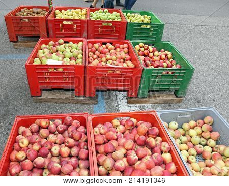 Boxes Of Fruit With The Ripe Apples At Market