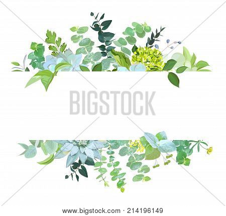 Horisontal botanical vector design banner. Baby blue eucalyptus, succulents, green hydrangea, wilflowers, various plants, leaves and herbs.Natural card or frame. All elements are isolated and editable