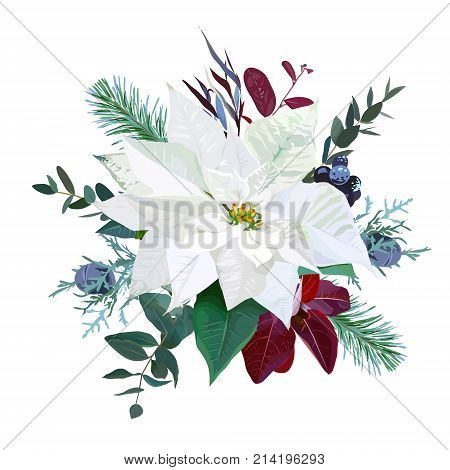 Christmas bouquet arranged from white poinsettia, parvifolia eucalyptus, fir branch, agonis, juniper, mix of plants and berries. Cute holiday greenery. Watercolor style set. All elements are isolated.