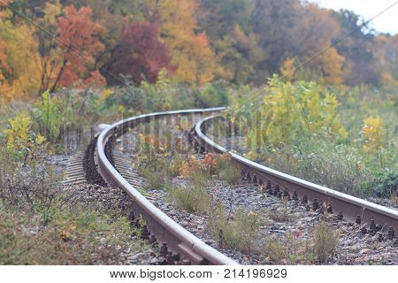 Railway or tramway track in a beautiful autumn park fog. dampness, bright warm autumn .
