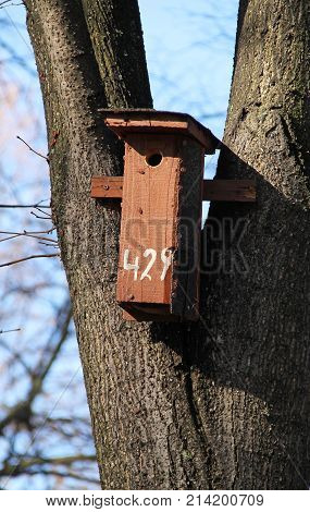 wooden nesting box for birds on the tree