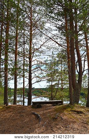 Viewing place. Resting place on high, in the middle of pine trees, by the river of Oulujoki, Vaala.