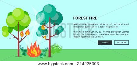 Forest fire web poster with inscription. Vector illustration of raging wildfire that has engulfed lush trees, bushes and grass with place for text