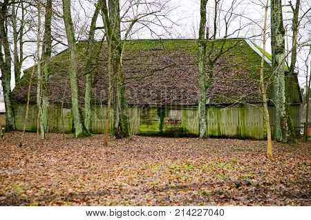 Old vintage green house in countryside trees around