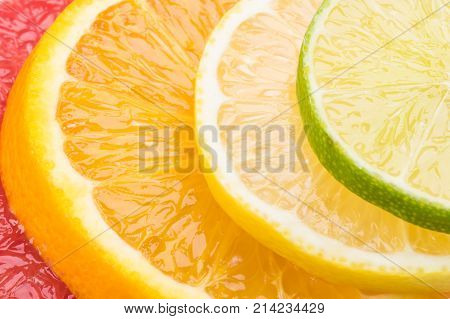 Abstract background with citrus fruit circles close-up