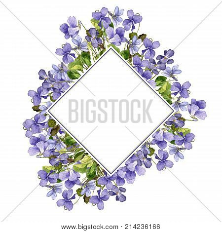 template with watercolor drawing flowers of violet, painted botanical illustration in vintage style, color floral background, hand drawn natural frame
