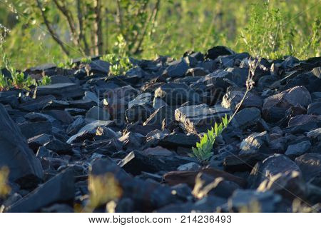 stones. stony road. quarry stones. rock construction geology heavy material