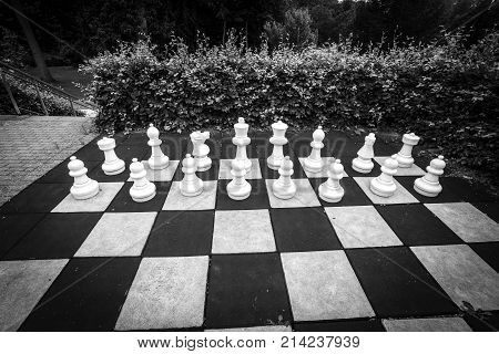 White Pieces In A Large Chess Game