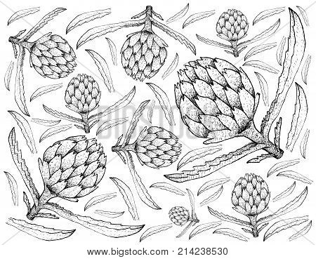 Vegetable, Illustration Background Pattern of Hand Drawn Sketch Delicious Fresh Artichoke Flowers with Green Leaves.