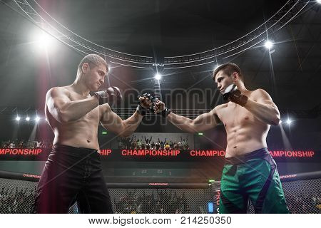 two mma fighters standing in fighting stance ready to fight in mma cage close up