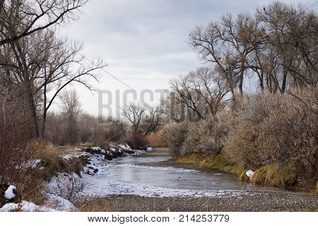 The water surrounding Norm's Island with snow at the banks and autumn colored foliage and bare deciduous trees. The sky is overcast.