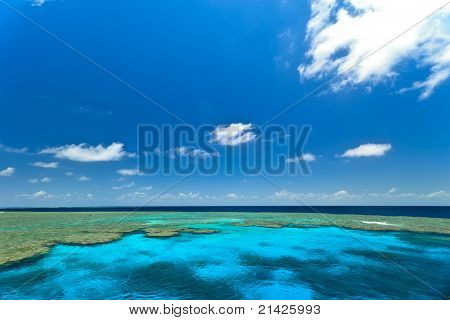 Great Barrier Reef Clam Gardens