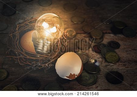 Scattered Coins with Light Bulb and Eggshell for Banking and Financial Concept