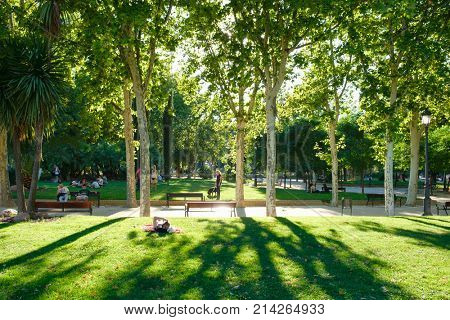 MADRID,SPAIN - AUGUST 6, 2017 : People relaxing at Parque del Buen Retiro, a famous urban park in Madrid