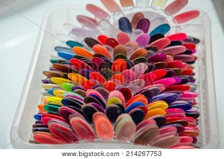 Palette For Varnish. A Color Palette For Varnish. A Varnish Color Palette In Beauty Shop.