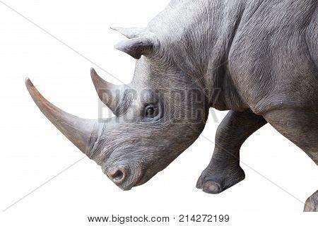 white rhinoceros square-lipped rhinoceros isolated on white background