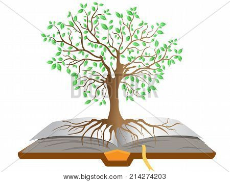 isolated the book tree on white background