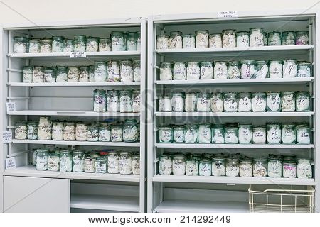 MOSCOW RUSSIA - June 24 2009. Glass jars with rags inside - samples of human blood and sweat. Shelves with material evidences in laboratory of examination human olfactory traces. Samples of deadbody's blood.
