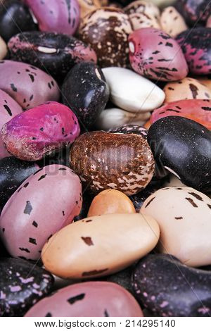 Beautiful mixed beans as background. Raw colorful bean texture. Foog photo.