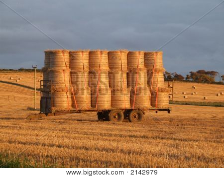 Cart Load Of Round Bales