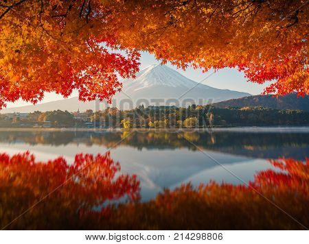 Mt.Fuji in autumn on sunrise at lake Kawaguchiko Japan. mount Fuji. mount Fuji Japan. mount Fuji at lake Kawaguchiko, japan.