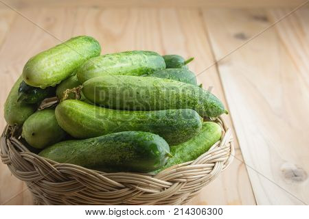 Fresh cucumbers in basket on wood .