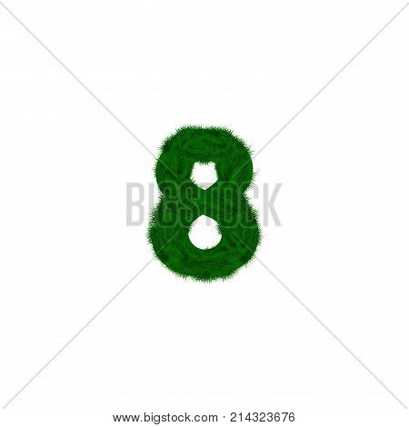 Vector numbers decorated with pine branches. Number- 8. Eight