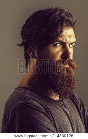 Young Bearded Man Hipster