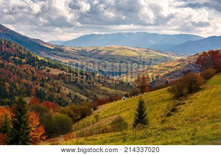 rural countryside in autumn. beautiful scenery in mountains with cloudy sky