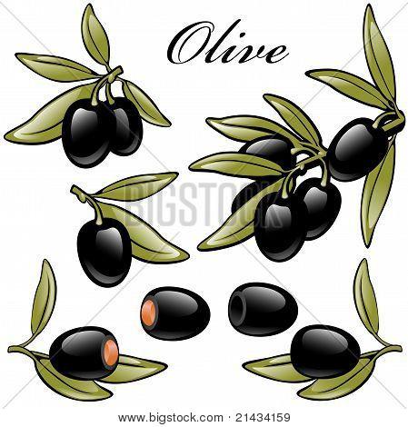 olives black. set.