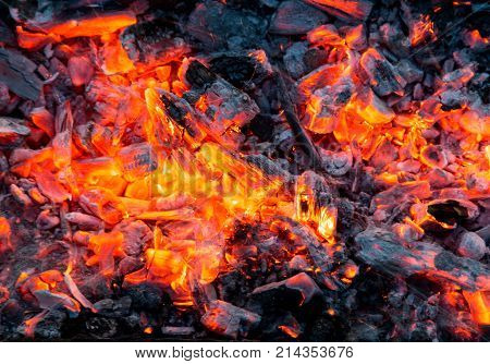 Campfire with burning firewood on foreground closeup .