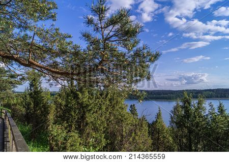 Landscape with lake and forest, under blue sky with clouds,  from Lietuva.