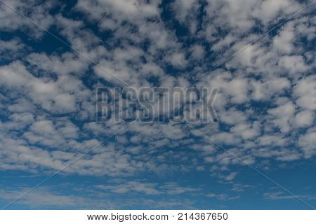 Puffy Field of Clouds on Blue Sky Background Image