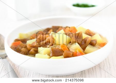 Traditional Chilean Estofado or Guiso de Cochayuyo (lat. Durvillaea antarctica) a vegan stew of bull kelp potato carrot and onion served in bowl photographed with natural light (Selective Focus Focus in the middle of the stew)