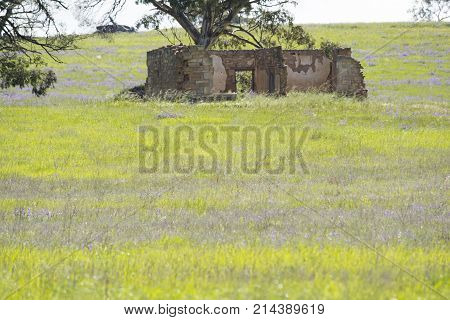 Old homestead in a random rural field found in Kapunda the tourism district of Barossa Valley within South Australia