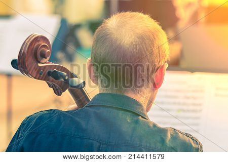 Old cellist man playing cello at an outdoor concert during warm golden hour evening light good for music or self interest theme concept