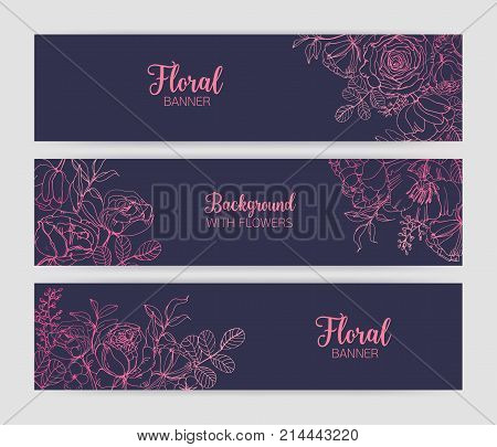 Collection of horizontal floral banners with gorgeous blooming rose flowers and leaves hand drawn with pink contour lines on dark background. Beautiful botanical vector illustration for advertisement