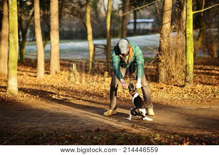 Young man trains the dog in the autumn park. He cheerfully plays with a pet. The vigorous doggy with pleasure executes commands. Dog gripped its teeth firmly in the stick.