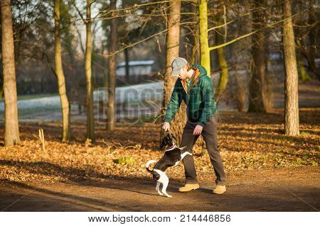 Young man trains the dog in the autumn park. He cheerfully plays with a pet. The vigorous doggy with pleasure executes commands.