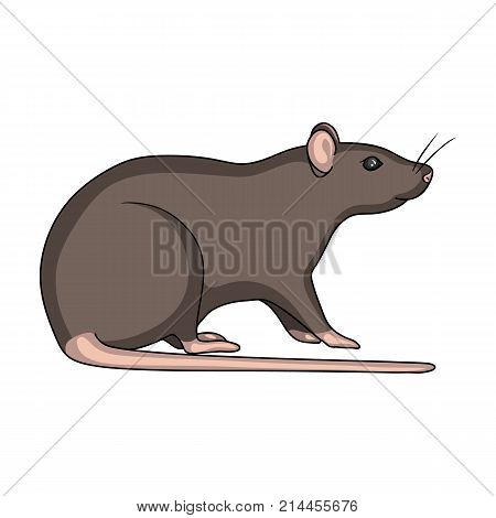 Rodent rat single icon in cartoon style for design.Pest Control Service vector symbol stock illustration .