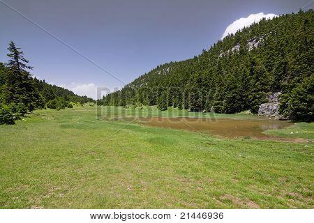Mountain Meadows