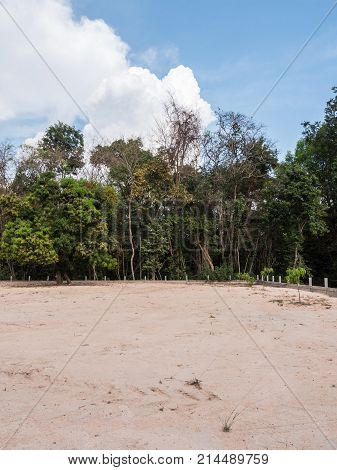 Sand ground is compacted for preparation to build the house which located near the forest in the rural areaThailand.
