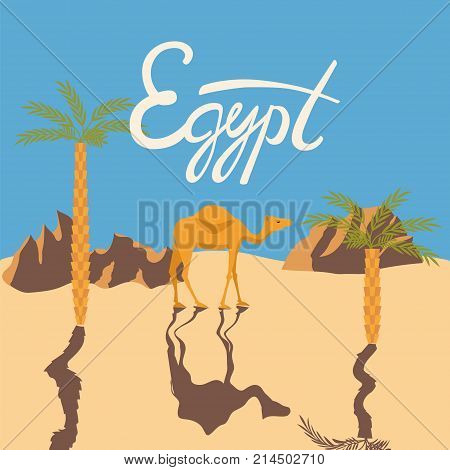 Camel in a desert with Egypt lettering. Stock vector illustration of a mammal animal standing on sand with palm trees in flat style.